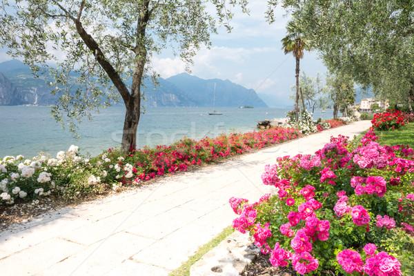 Kwiaty jezioro garda wody front Włochy łodzi Zdjęcia stock © manfredxy