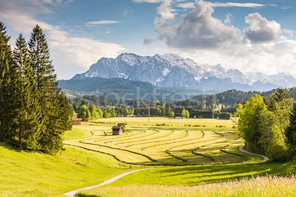 Kirándulás út terjedelem hegy mező hegyek Stock fotó © manfredxy