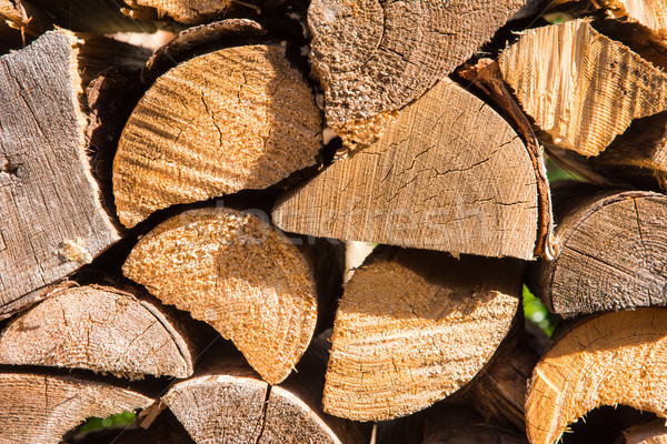 Woodpile with cut firewood Stock photo © manfredxy