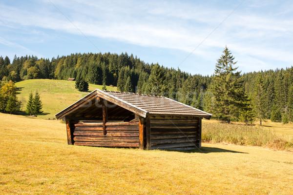 альпийский сарай гор горные осень сельского хозяйства Сток-фото © manfredxy
