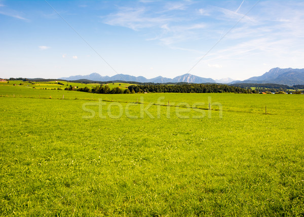 Rural landscape in Bavaria Stock photo © manfredxy