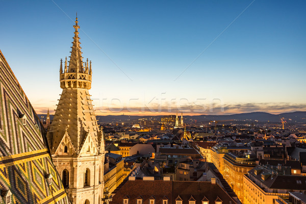 Stephansdom cathedral and aerial view over Vienna at night Stock photo © manfredxy