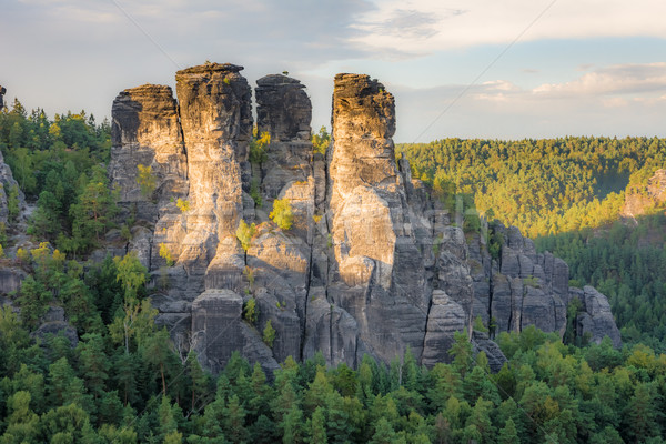 Rocks in the Elbe Sandstone Mountains Stock photo © manfredxy
