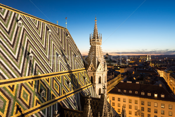 Stock photo: Stephansdom cathedral and aerial view over Vienna at night