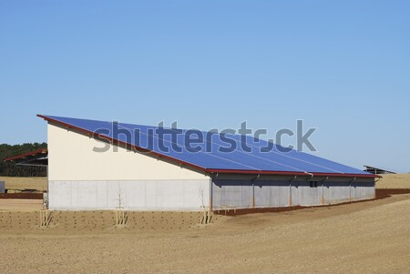 Solar energy Stock photo © manfredxy