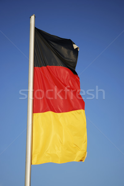 German flag Stock photo © manfredxy