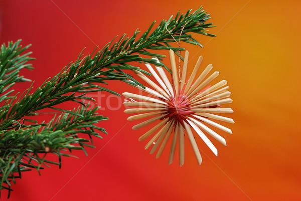 Christmas ornament tak boom oranje Stockfoto © manfredxy