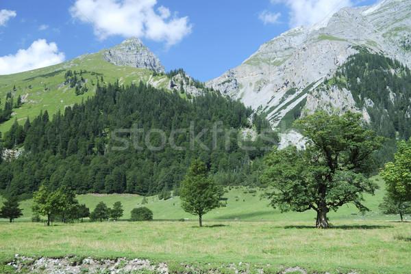 Alps in Tirol Stock photo © manfredxy