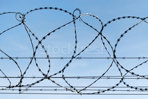 Barbed wire Stock photo © manfredxy