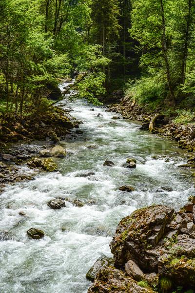 River flowing through the Breitachklamm Gorge Stock photo © manfredxy