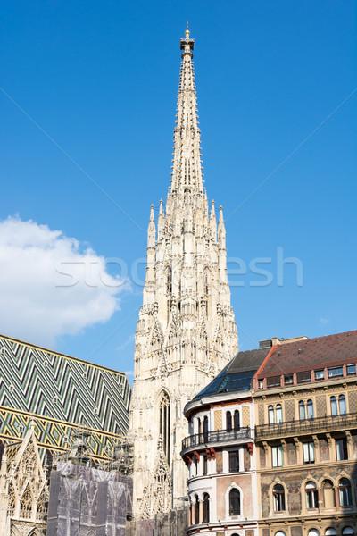 Gothic katedry Wiedeń Austria budynku dachu Zdjęcia stock © manfredxy