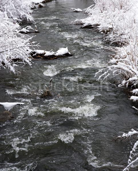 Folyó folyik tél tájkép hó Stock fotó © manfredxy