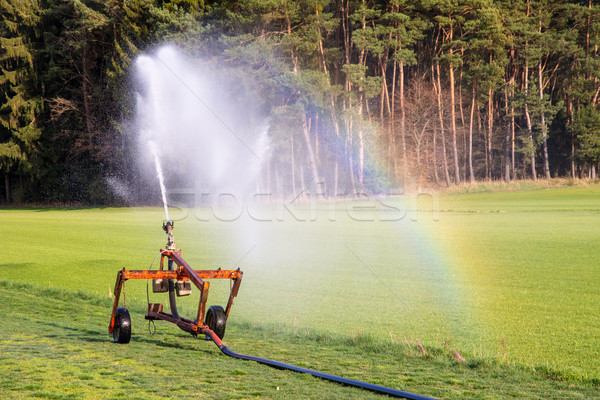 Watering a field Stock photo © manfredxy