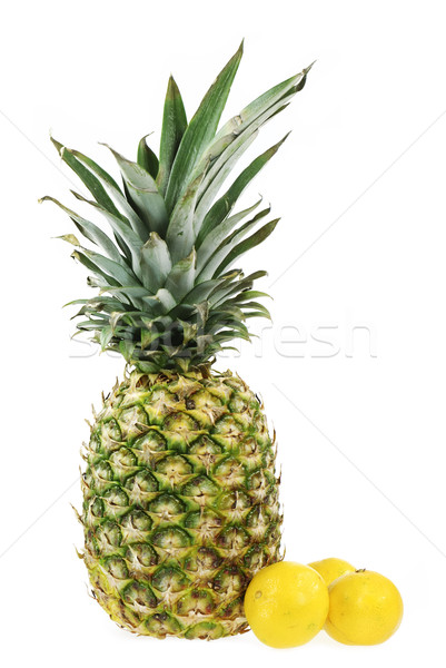 Tropical Fruits Stock photo © manfredxy