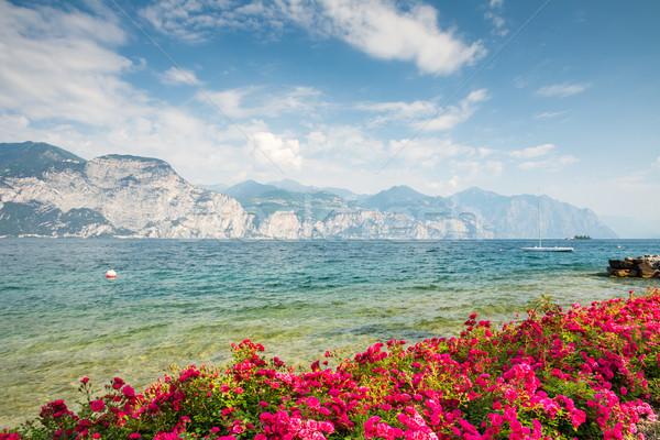 Blumen Gardasee Wasser Vorderseite Italien Landschaft Stock foto © manfredxy