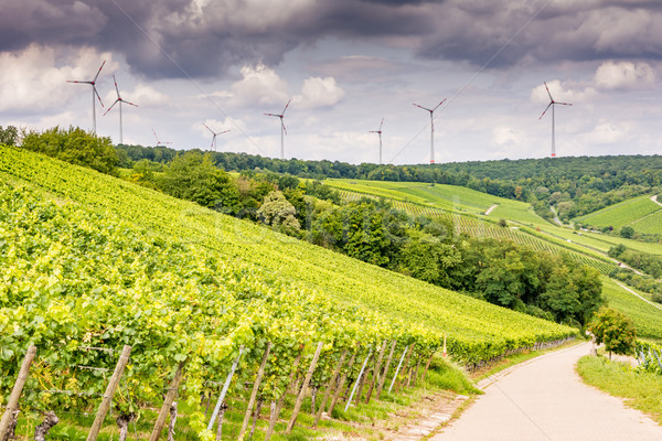 Growing wine and windpower in Franconia Stock photo © manfredxy