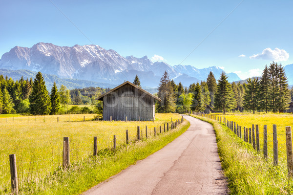 Road and a barn in the Bavarian alps Stock photo © manfredxy