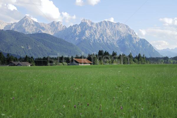 Mountain pasture Stock photo © manfredxy