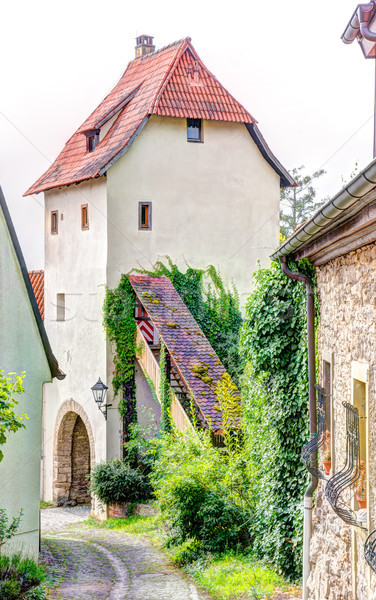 Medieval defense tower in Sulfeld am Main Stock photo © manfredxy