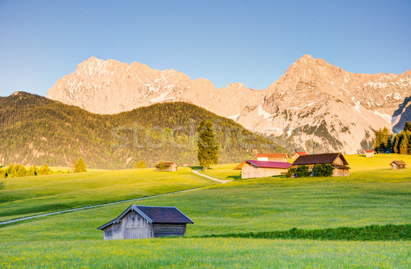 Pasture at the Karwendel mountains Stock photo © manfredxy