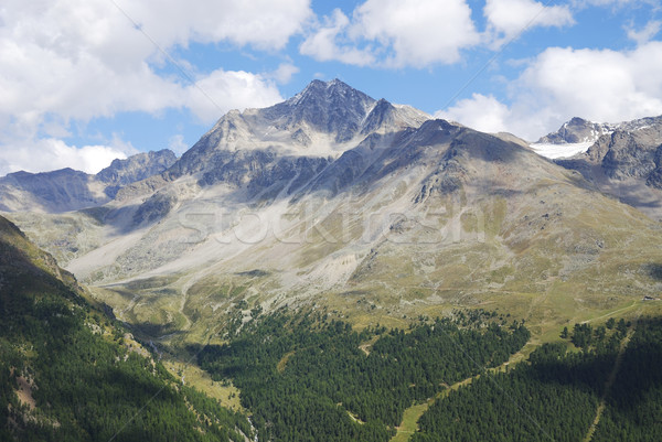 Alps in the Vinschgau Stock photo © manfredxy