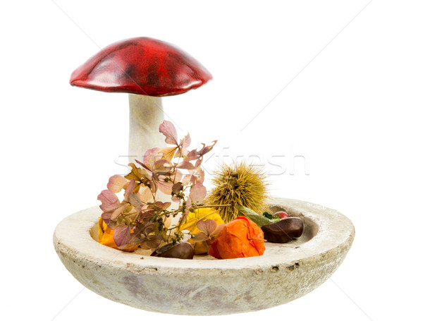 Isolated autumn deco with a mushroom Stock photo © manfredxy