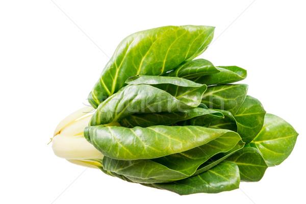 Izolált egészséges zöldségek friss levél saláta Stock fotó © manfredxy