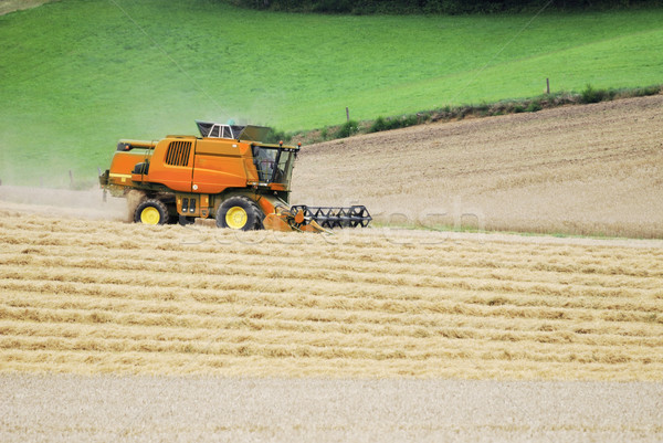 Cobine harvester Stock photo © manfredxy