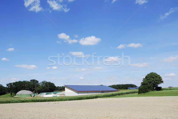 Alternatív energia biogáz gyártás napenergia égbolt Stock fotó © manfredxy