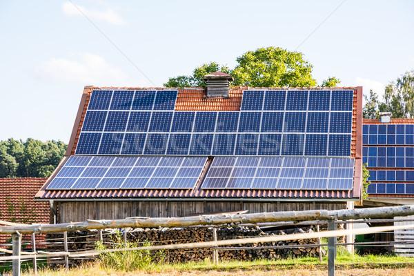 ファーム 太陽エネルギー 代替案 エネルギー 創造 技術 ストックフォト © manfredxy