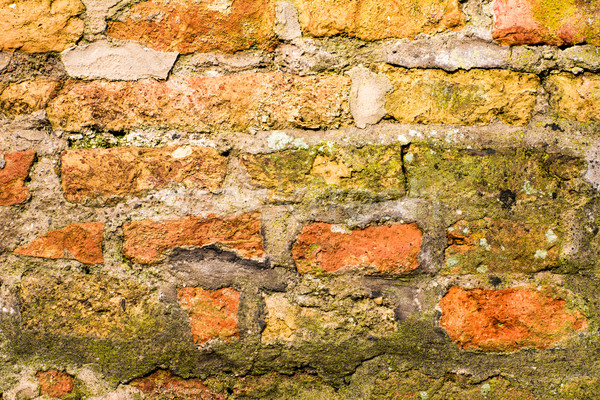 Grunge background with a wall of bricks Stock photo © manfredxy