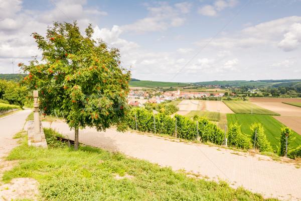 Bölge yol manzara sokak bitki Avrupa Stok fotoğraf © manfredxy