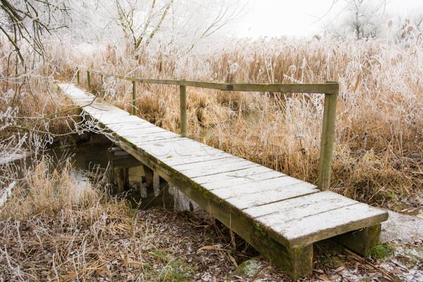 Starych most zimą krajobraz ochrona Zdjęcia stock © manfredxy