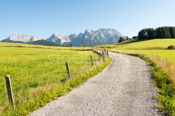 Alpine Path Stock photo © manfredxy