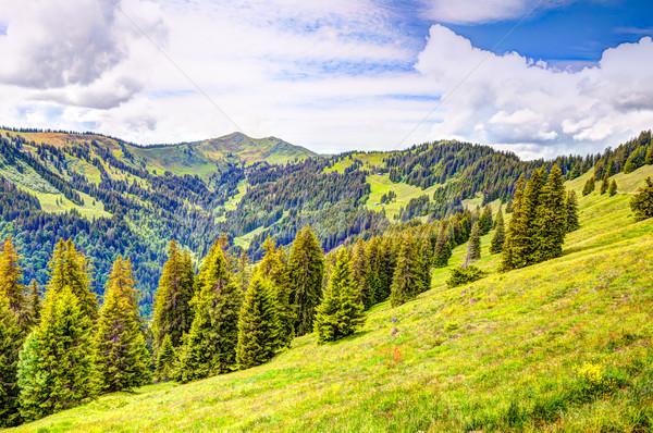 Mountain landscape in the Allgäu Stock photo © manfredxy