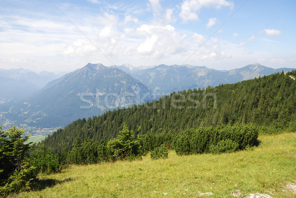 Bavarian Alps Stock photo © manfredxy