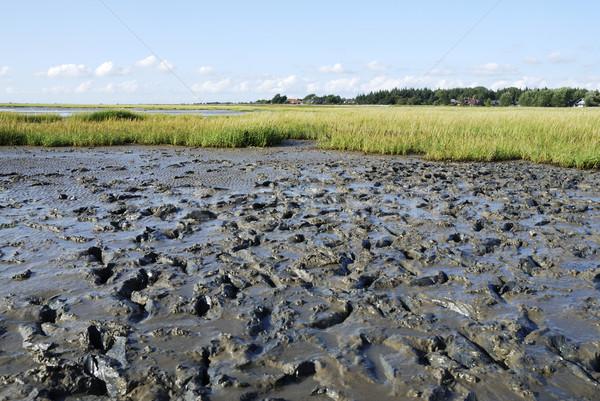 Wadden Sea Stock photo © manfredxy