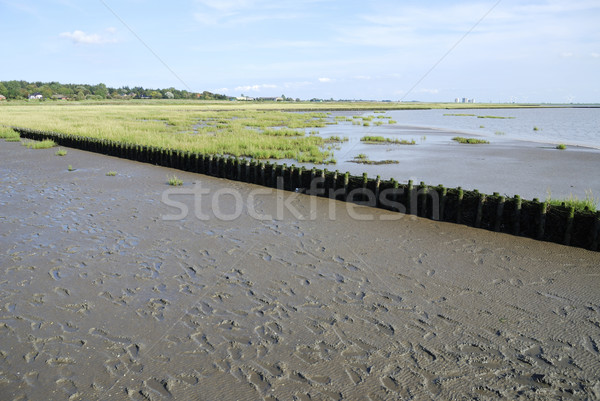 Land reclamation Stock photo © manfredxy