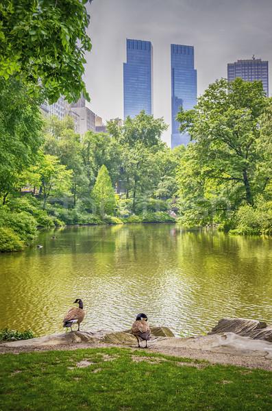 ストックフォト: セントラル·パーク · マンハッタン · ニューヨーク市 · 空 · 水 · 春