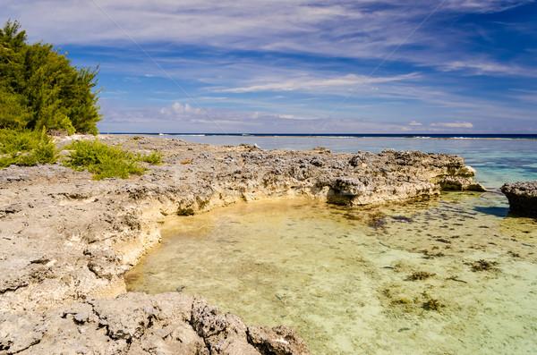 Tropikal plaj fransız polinezya su manzara arka plan Stok fotoğraf © marco_rubino