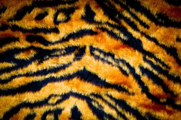 tiger skin texture Stock photo © Marcogovel