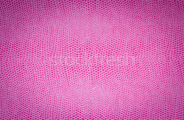 pink leather texture Stock photo © Marcogovel