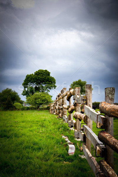meadow fence Stock photo © Marcogovel