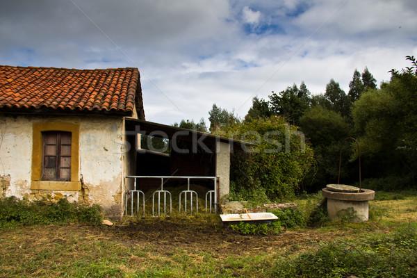 abandoned house Stock photo © Marcogovel