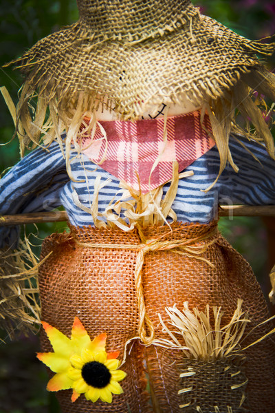 épouvantail jardin sourire bois orange vert Photo stock © Marcogovel