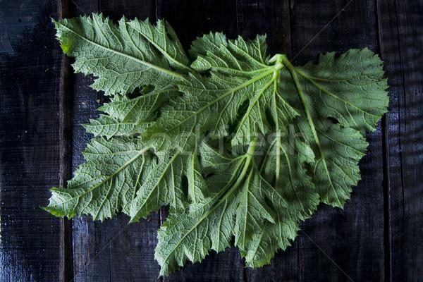 緑の葉 カボチャ 黒 表 ストックフォト © marcoguidiph