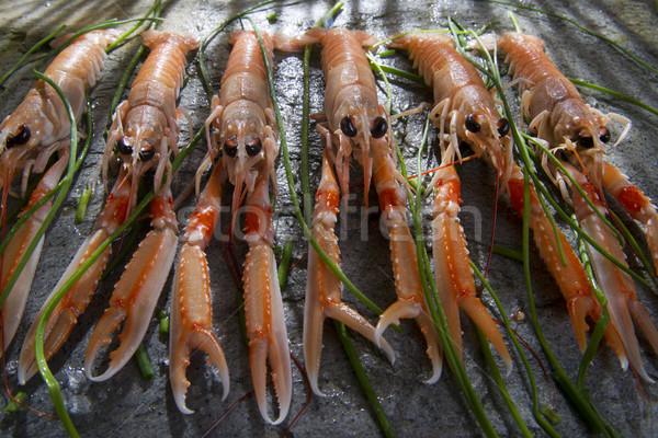 Taze karides deniz ürün tanıtım hazırlık Stok fotoğraf © marcoguidiph
