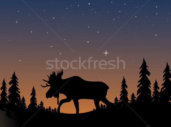 Eland silhouet avond schemering hemel bos Stockfoto © marcopolo9442