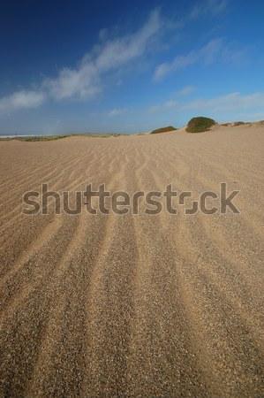 Dune de sable plage de sable dune point plage océan Photo stock © marcopolo9442