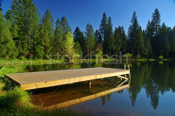 Frühling Seeufer Frühling Bäume Bereich grünen Stock foto © marcopolo9442